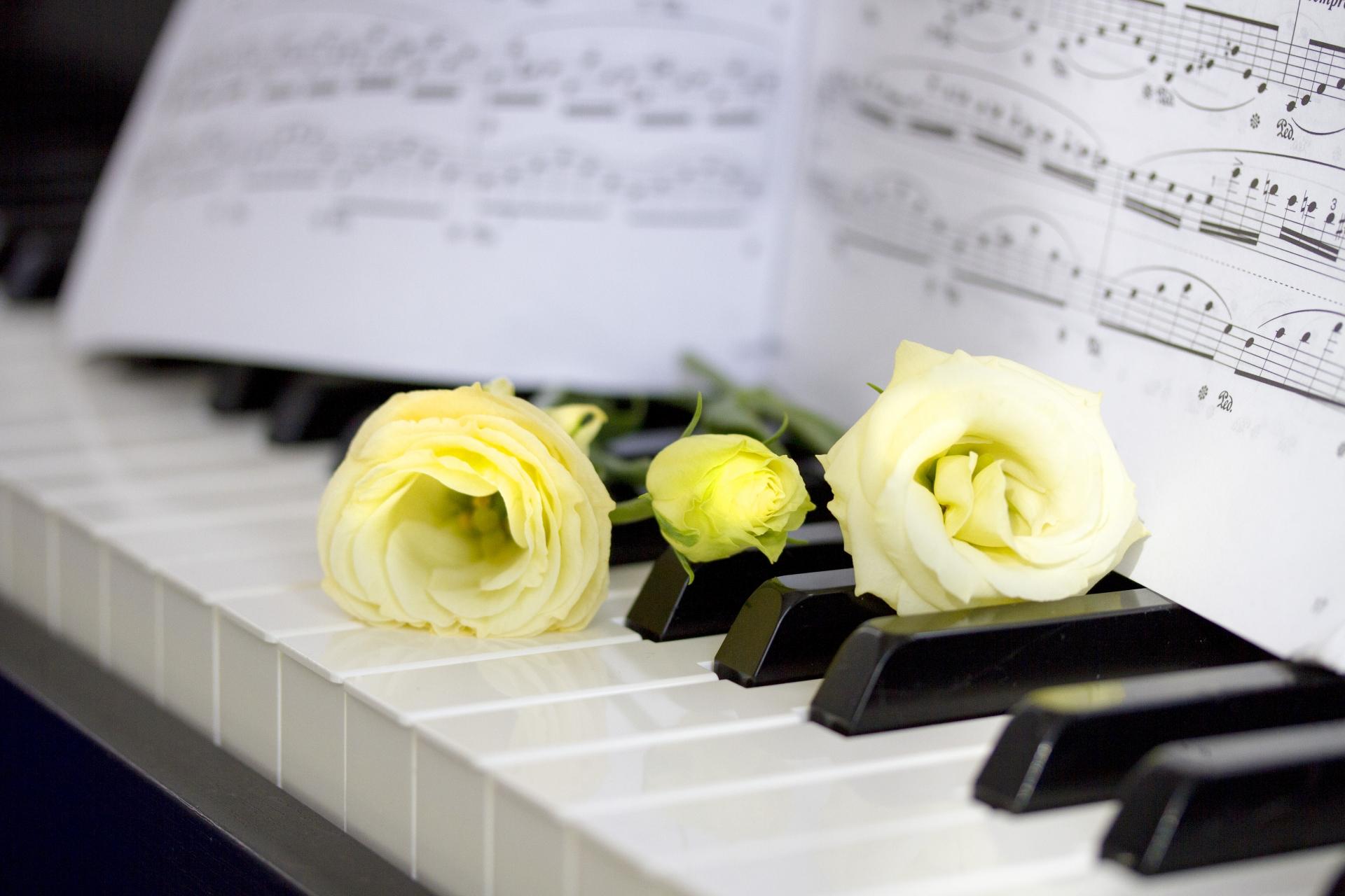 想いを届けよう!結婚式で弾きたいオススメのピアノ曲